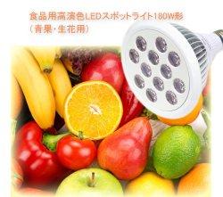 画像1: 食品用高演色LEDスポットライト180W相当形(青果・生花用)