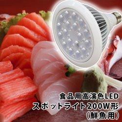 画像1: 食品用高演色LEDスポットライト200W形(鮮魚用)