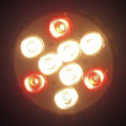 画像2: 食品用高演色LEDスポットライト10W 揚物用 120W相当形